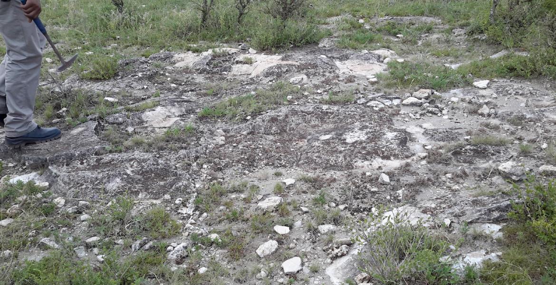 Exposures of limestone formation at Dr Jane property at Namanga area